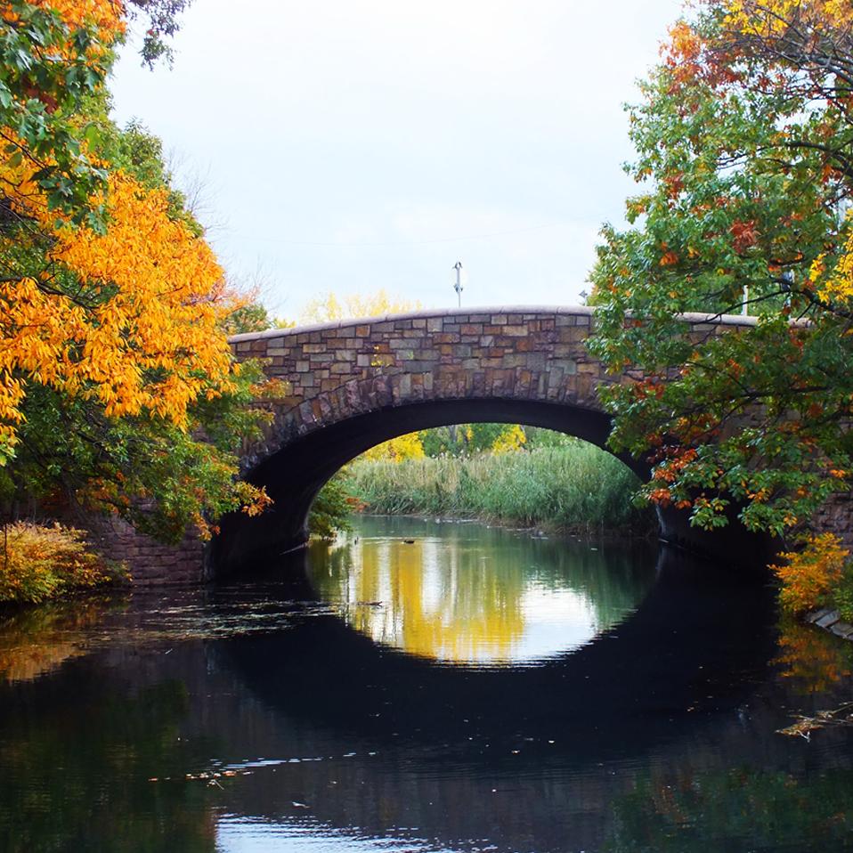 Leaf Peeping in Massachusetts
